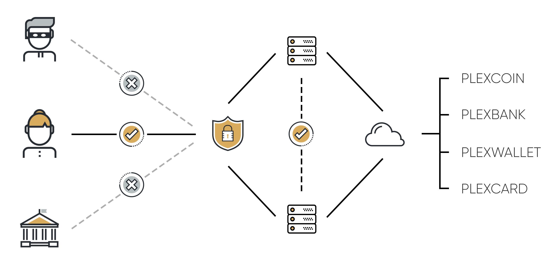 PlexCoin projekto vizualizacija